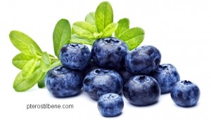 pterostilbene blueberries
